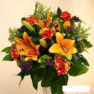 Жуковский купить цветы